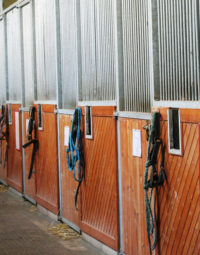 Equifloor_Sol_Equestre_e-kit-luxe_thumb